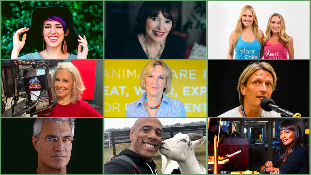 A grid of featured expo talent